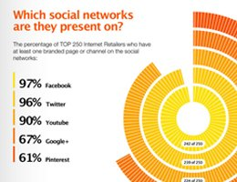 Campalyst: Top 250 Internet Retailers On Social Media Infographic
